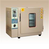 101A-1E实验厂电热鼓风干燥箱300℃灭菌箱