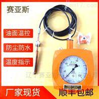 温度指示控制器BWY-02/BWY-02(TH)