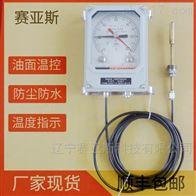 温度指示控制器BWY-802(TH)