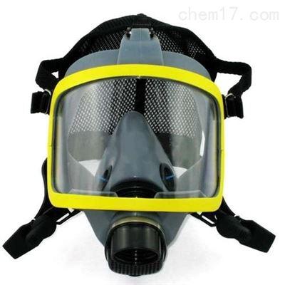 YFDFDMJ全面具防毒面罩