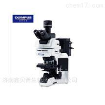 奥林巴斯无限远光学系统生物显微镜