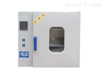 101-2口罩检测恒温干燥箱