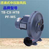 TB125-3焚化炉助燃鼓风机