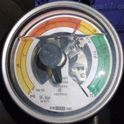 GDI-100原装进口德国威卡WIKA气体密度显示器