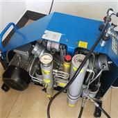 科尔奇空气充填泵厂家
