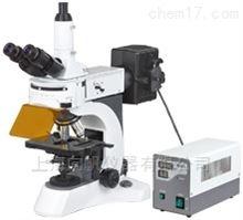 N-800F实验室荧光显微镜
