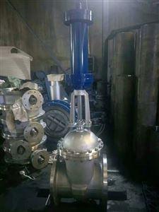 液控快关闸阀HZ741H