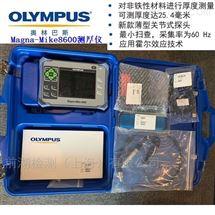 Magna-Mike 8600奧林巴斯塑料薄膜片測厚儀