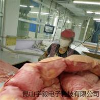 ACS昆山、杭州羽绒被、枕芯填充机械