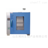 DHG-9250B电热恒温干燥箱