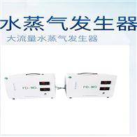 FD-WG大流量水蒸气发生器