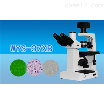 WYS-37XB三目倒置生物显微镜