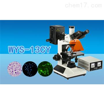 WYS-13CY三目荧光显微镜