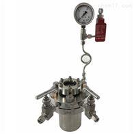普林塞斯-不锈钢  高压 反应器10MPa