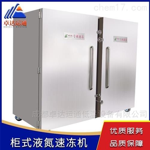 杨梅液氮速冻机厂家