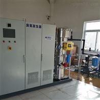HCCF臭氧发生器工厂污水提标改造处理
