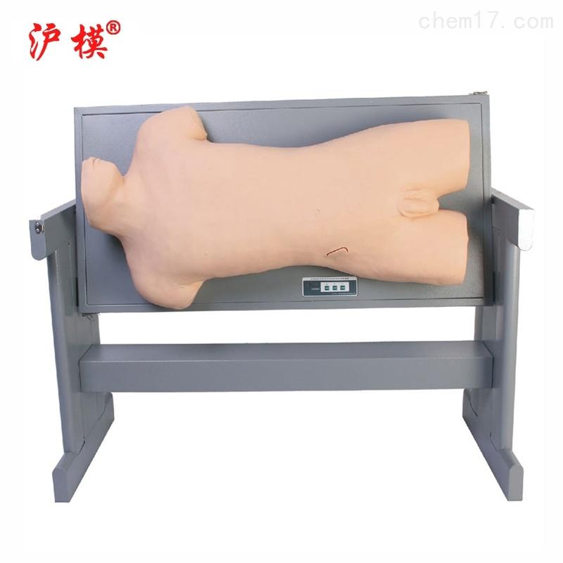 沪模综合胸腔穿刺模型模拟人
