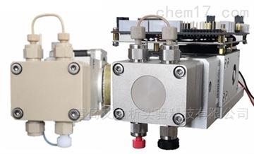 P2000离子色谱泵