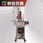3L聚合反应装置