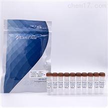 2x预混实时荧光定量快速PCR反应体系