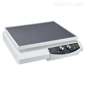 Promax 2020 平板振荡器 Heidolph