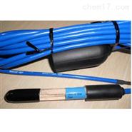 日本DKK ELCP-81-5F氟离子电极(5米电缆)