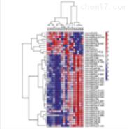 microRNA PCR芯片操作流程
