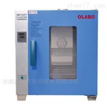 DHG-9203A恒溫干燥箱