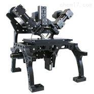 diSPIM光片荧光显微镜