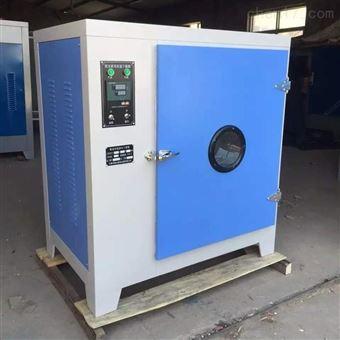 101-1红外线电热鼓风干燥箱