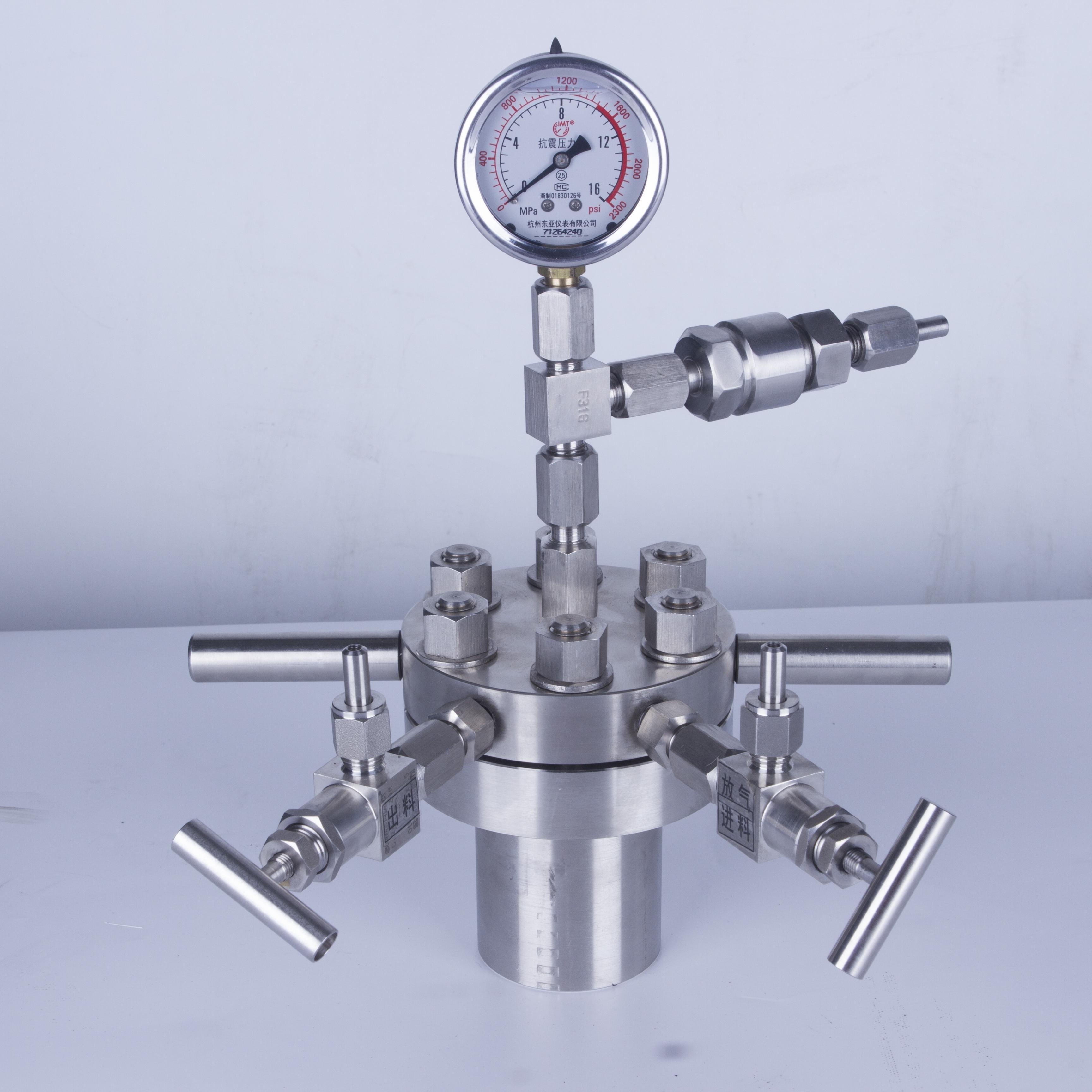 简易高压反应釜不锈钢小型CF-0.1L