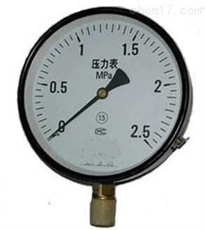 YZS-102双针上海压力表