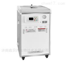 LDZM-80KCS立式灭菌器