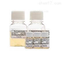 正常血清(Human normol serum)