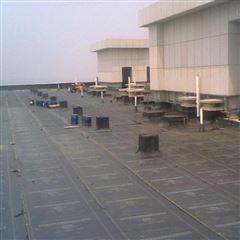 楼顶防水补漏材料