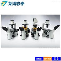 XD30倒置荧光显微镜