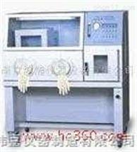 SYQX-11厌氧培养箱