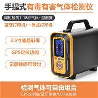 手提式可燃气体分析仪 PTM600-Ex