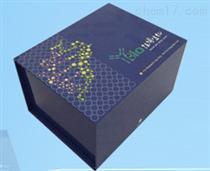 ELISA试剂盒价格