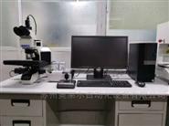 自动检测分析系统