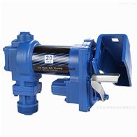 NYP110-RU-T1-W11VIKING 泵