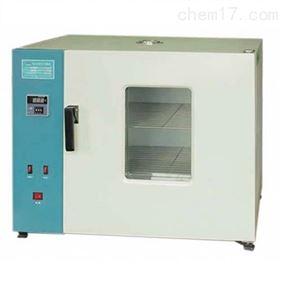非标系列电热鼓风干燥箱