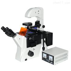无穷远倒置荧光显微镜