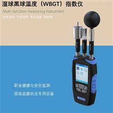 黑球湿球温度指示仪WBGT热指数测定仪