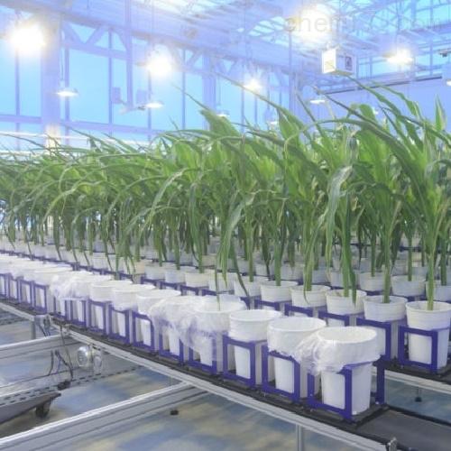 Conveyor植物表型成像系统