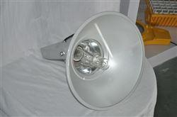 润光照明NTC9210/NTC9210A防震型投光灯