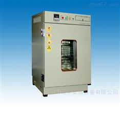 老化试验箱401A和401B高温300℃价格/报价