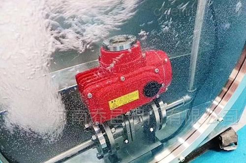 浸水型电动法兰球阀