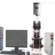 ML-210JZ迈朗动物*子分析仪