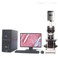 sj-tmdi810(II)迈朗高倍智能变焦数码显微分析仪